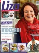 Liza 47/2017